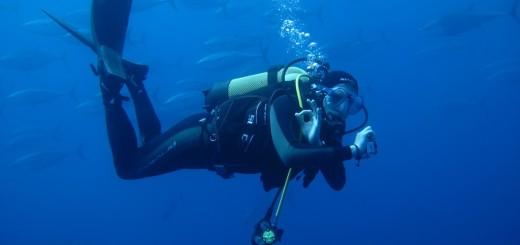 Corso per Operatore tecnico subacqueo (Centro Professionale Europeo Leonardo 2013)